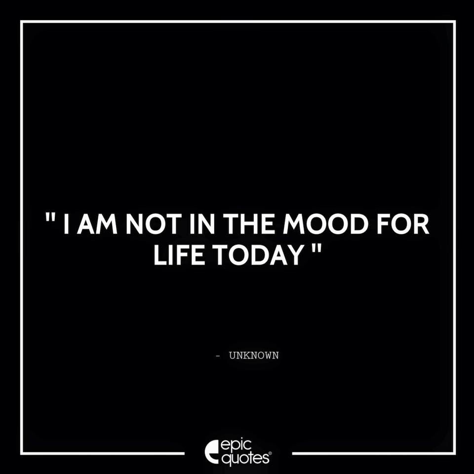 I am not in the mood for life today.