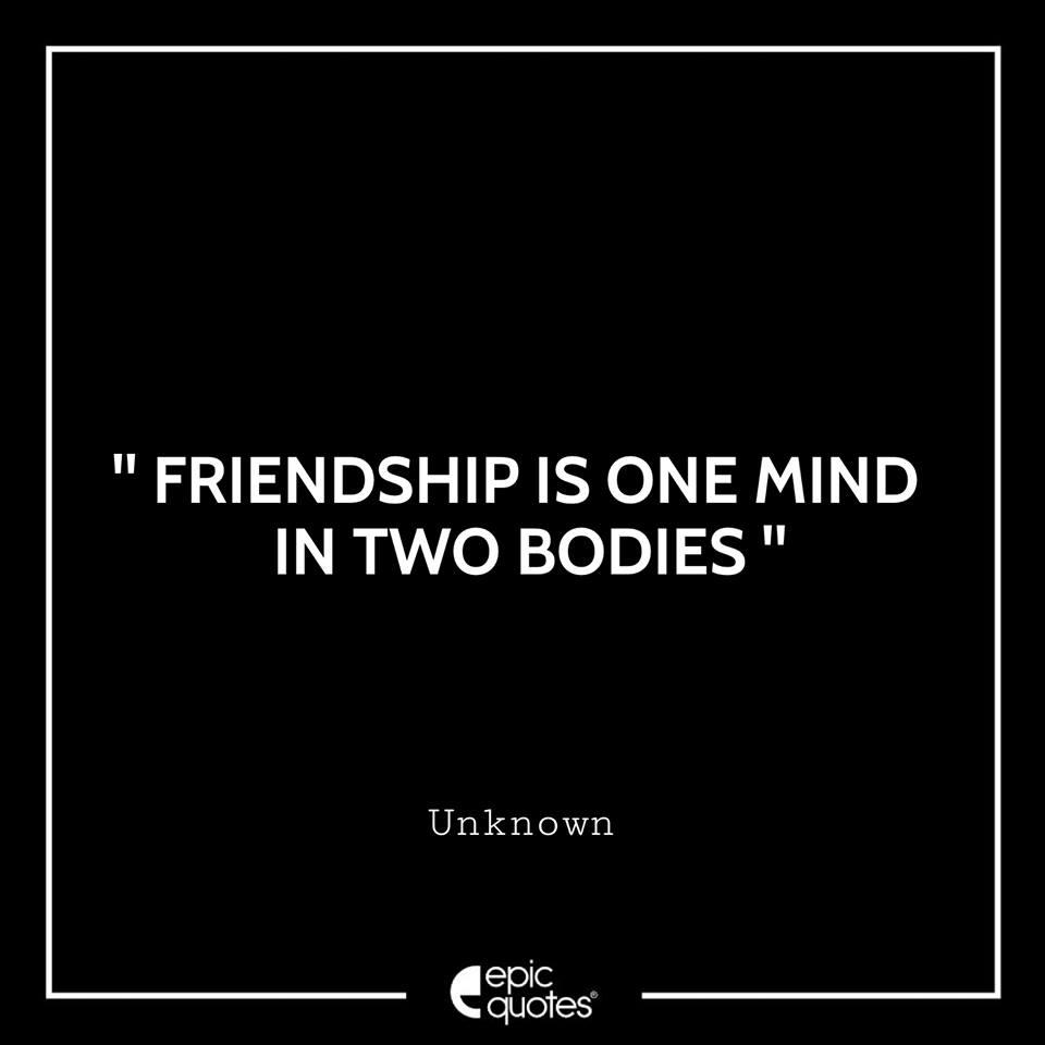2028 Friendship