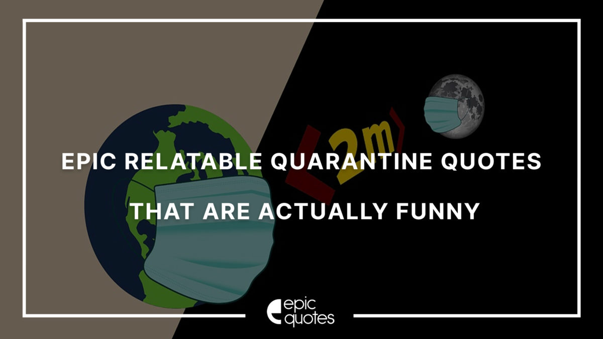 Epic relatable Quarantine Quotes that are actually pretty funny